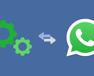 discovering whatsapp business api