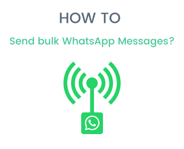 How to send bulk WhatsApp Messages Effectively?