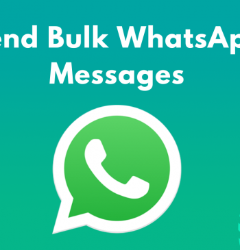 Send Bulk WhatsApp Messages